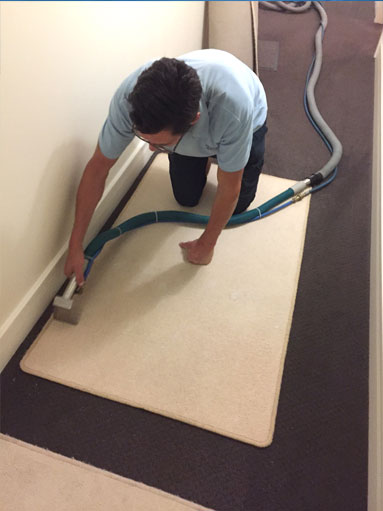 cleaning rug and mats